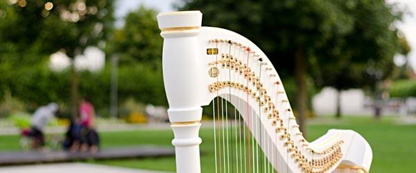 harfe-lernen-harfenunterricht-marion-hensel