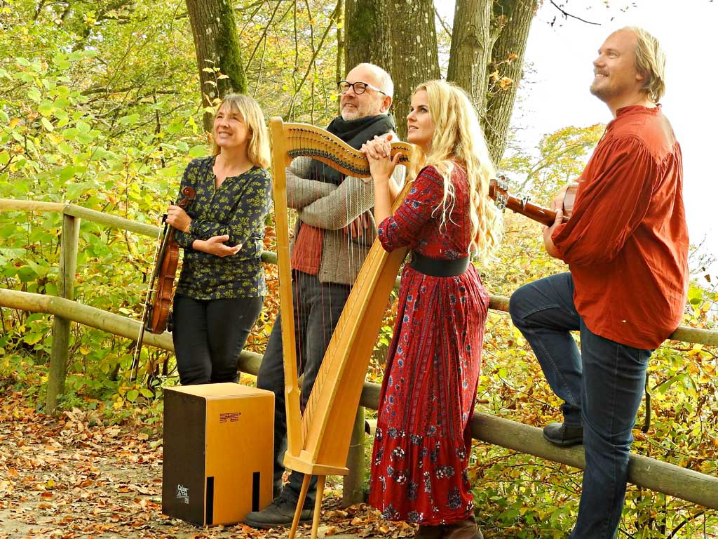 Tempera Irish Folk Band